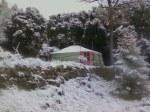 Solitary Yurt