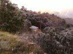 Solitary Retreat Yurt