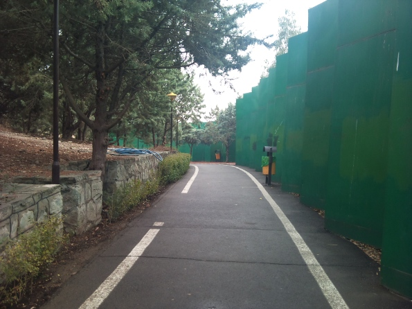 A huge green metal fence surrounds the park