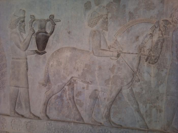 Horse relief