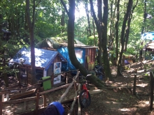 Scotland, protest site, Bilston Glen, tree-sit, sustainability, campaign
